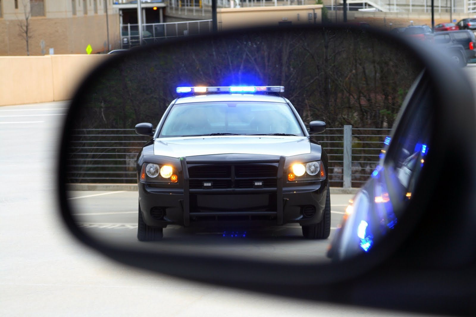 New App: Solomon's Shield Changes the Odds When Encountering Police